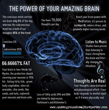 power of brain