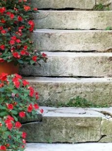 steps with flowers
